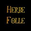 HERBE FOLLE - Compagnie générale des herbes folles: Concert Musique Rock Blues Apéro Jazz mariage
